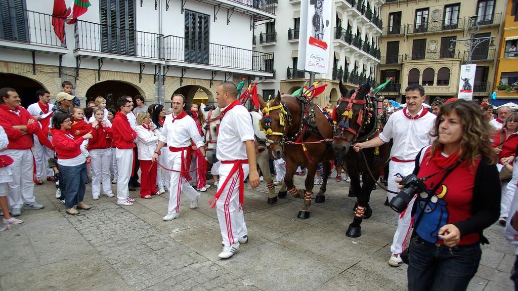 Las mulillas camino de la plaza de toros de Pamplona - Turismo en Navarra